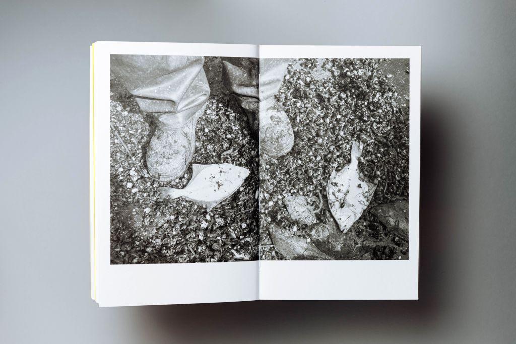 Dorota Oza Karecka Fotografia - książka ze zdjęciami zKaszub
